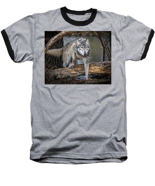 Stepping Over Baseball T-Shirt