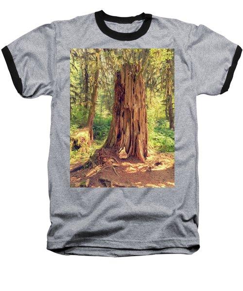 Stump In The Rainforest Baseball T-Shirt