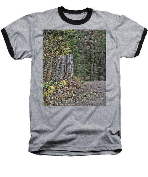 Stumped Baseball T-Shirt