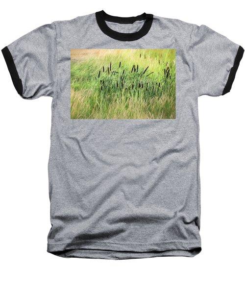 Summer Cattails In Field Of Grass - Baseball T-Shirt