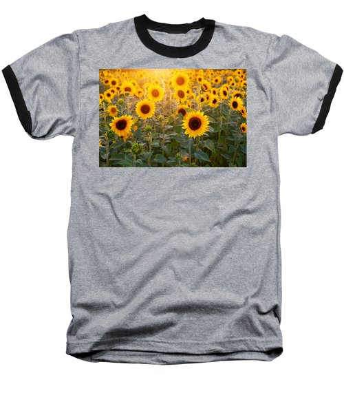 Sunflowers Field Baseball T-Shirt