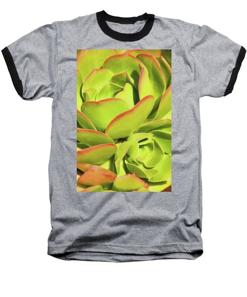Sweet Succulents I Baseball T-Shirt
