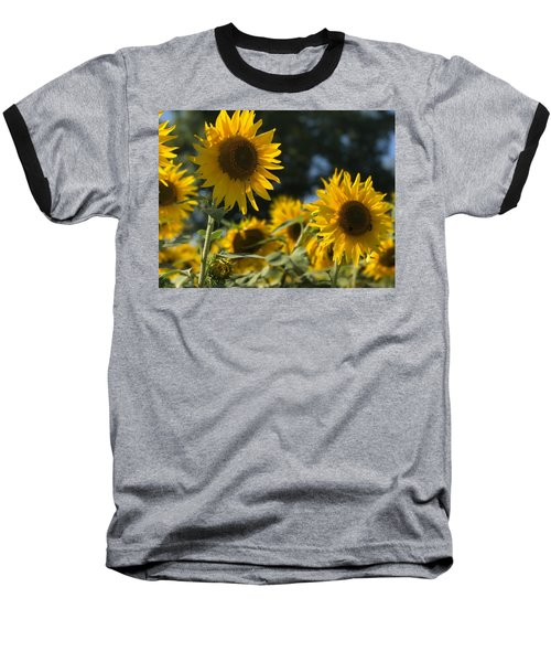 Sweet Sunflowers Baseball T-Shirt