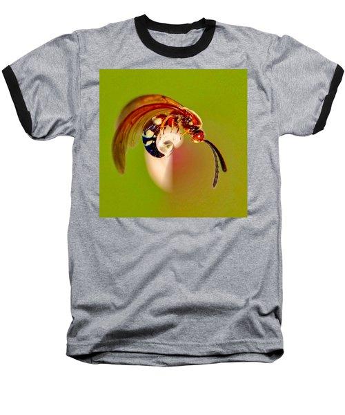Swirly Wasp Baseball T-Shirt