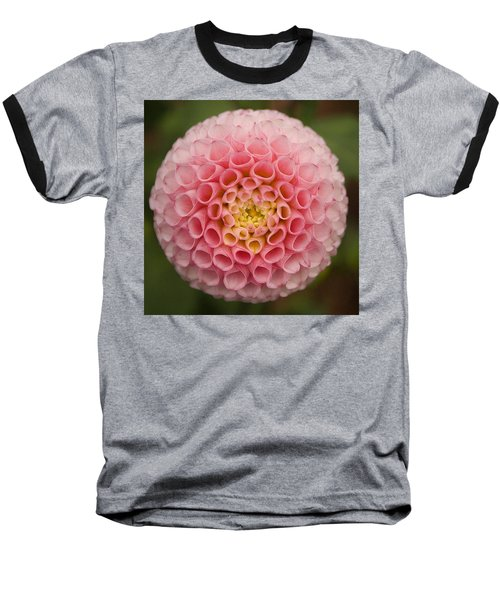 Symmetrical Dahlia Baseball T-Shirt
