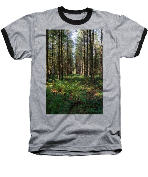 Tall Trees In Sherwood Forest Baseball T-Shirt
