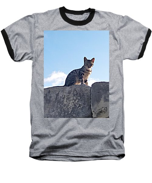 The Cat Baseball T-Shirt