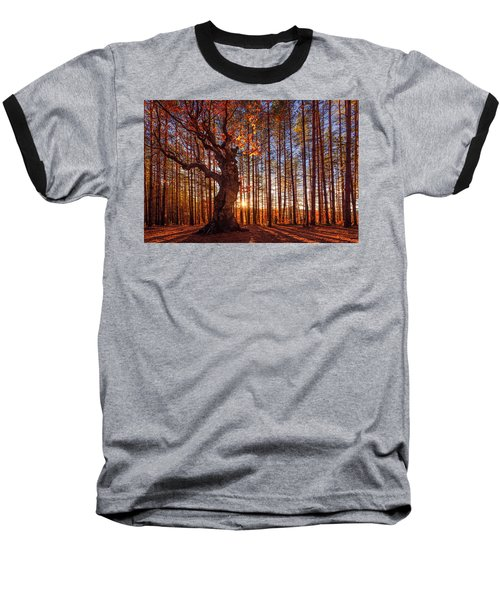 The King Of The Trees Baseball T-Shirt