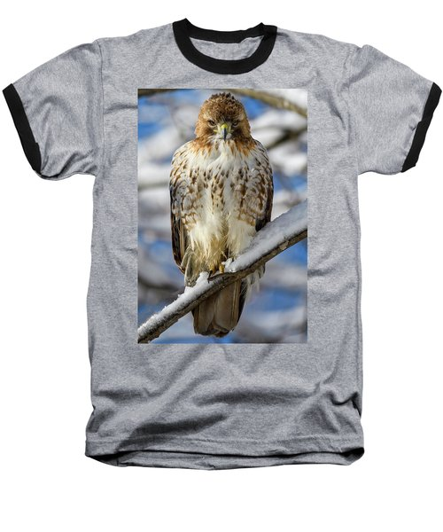 The Look, Red Tailed Hawk 1 Baseball T-Shirt