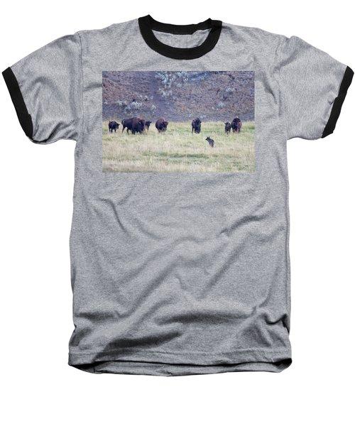 The Naming Of Spitfire Baseball T-Shirt