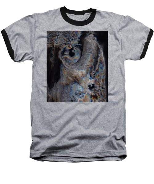 The Old Owl That Watches Baseball T-Shirt