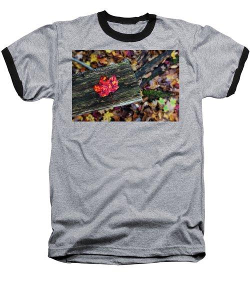 The Reason They Call It Fall Baseball T-Shirt