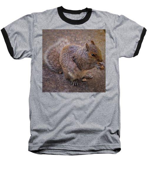 The Squirrel - Cornwall Baseball T-Shirt