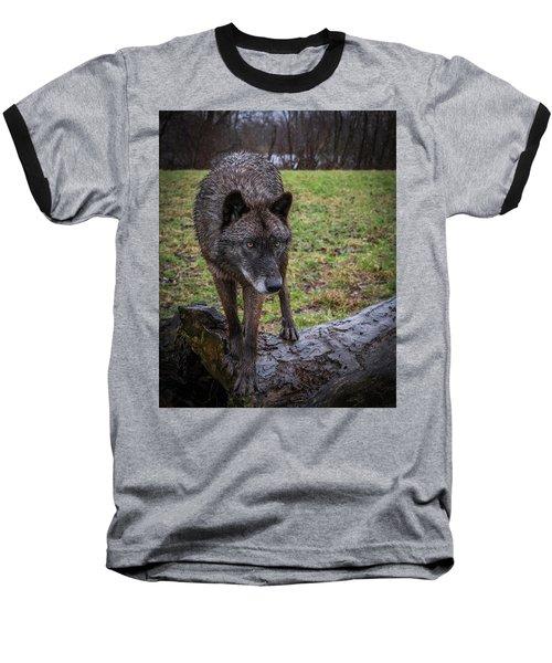 This Is My Log Baseball T-Shirt