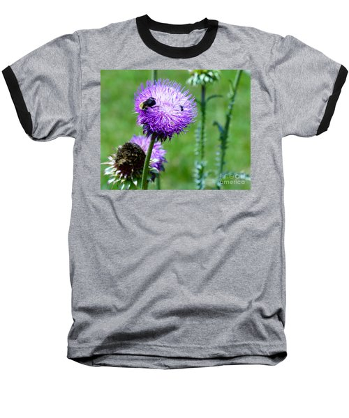 Thistle Visitors Baseball T-Shirt