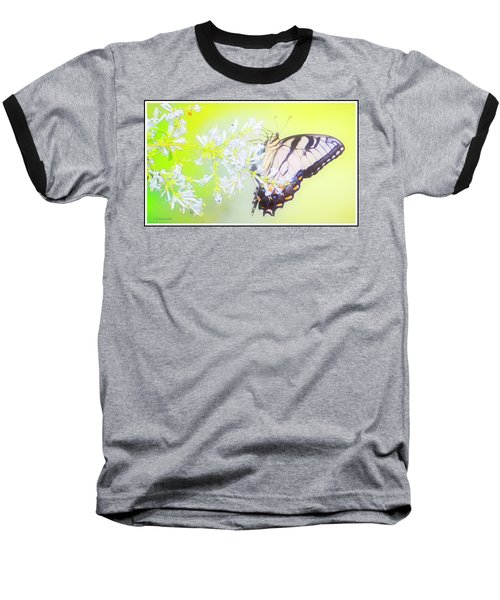 Tiger Swallowtail Butterfly On Privet Flowers Baseball T-Shirt