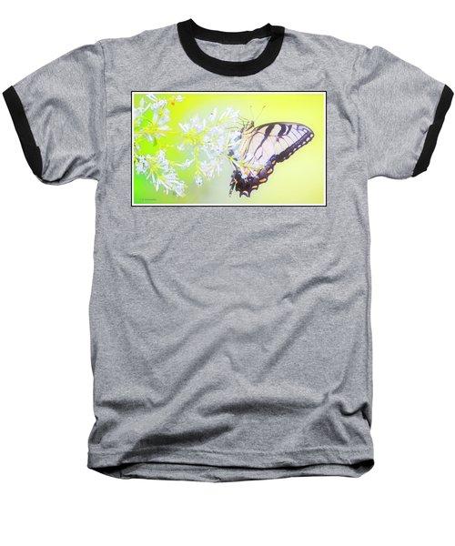 Tiger Swallowtail Butterfly On Privet Flowers Baseball T-Shirt