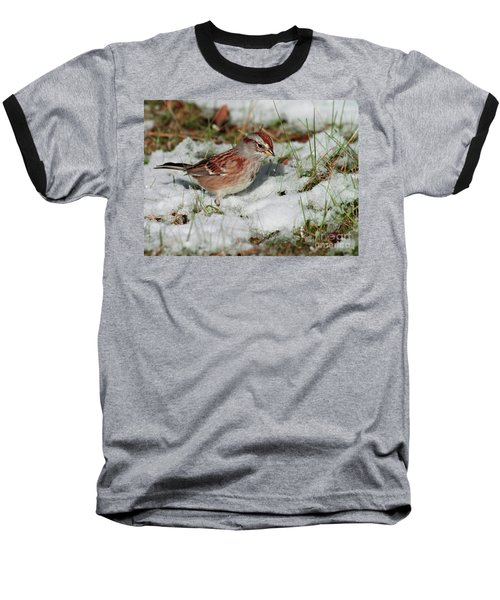 Tree Sparrow In Snow Baseball T-Shirt