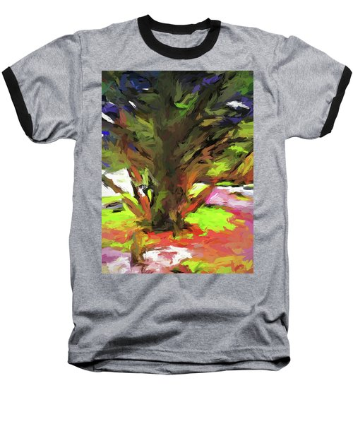 Tree With The Open Arms Baseball T-Shirt
