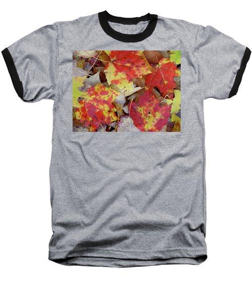 True Autumn Colors Baseball T-Shirt