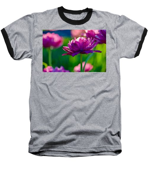 Tulips In Bloom Baseball T-Shirt