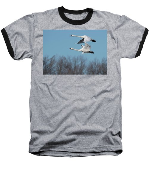 Tundra Swan Duo Baseball T-Shirt
