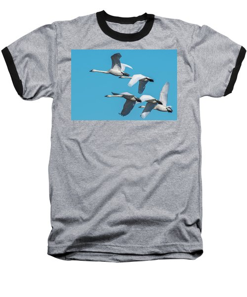 Tundra Swans In Flight Baseball T-Shirt