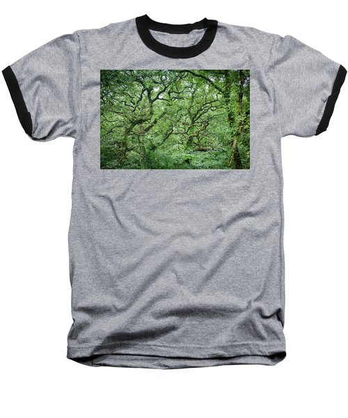 Twisted Forest Full Color Baseball T-Shirt