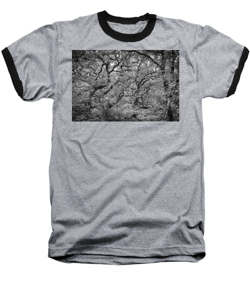 Twisted Forest Baseball T-Shirt