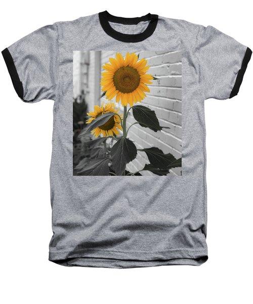 Urban Sunflower - Black And White Baseball T-Shirt