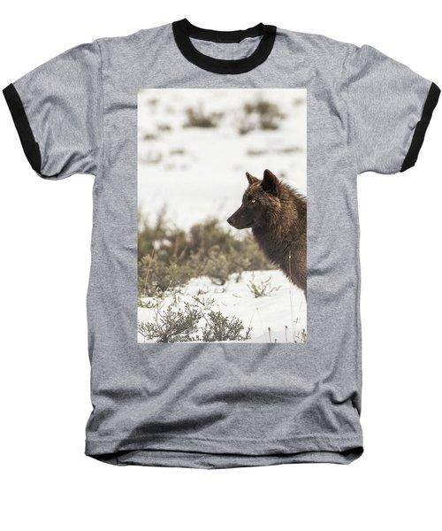 W11 Baseball T-Shirt