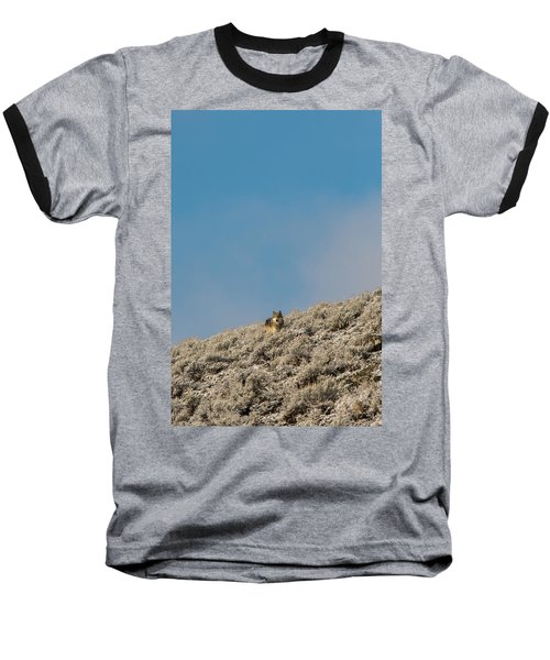 W24 Baseball T-Shirt