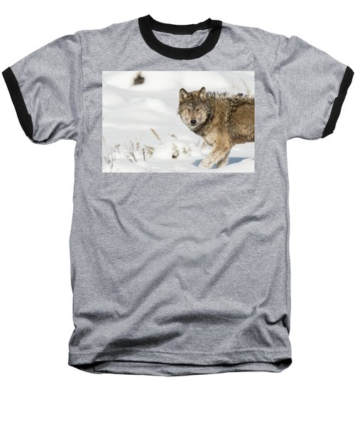 W35 Baseball T-Shirt
