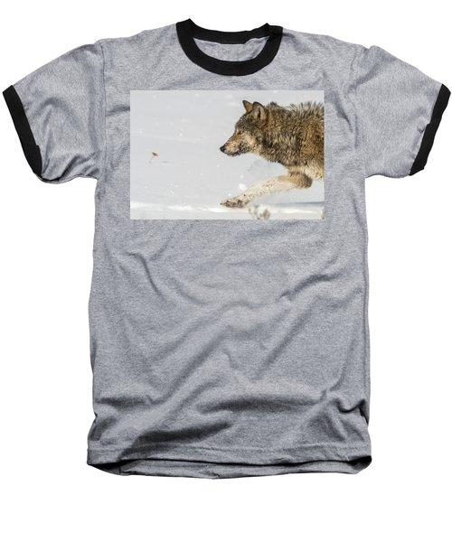 W36 Baseball T-Shirt