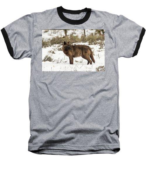 W9 Baseball T-Shirt