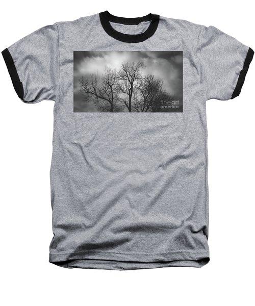 Waiting Bird Baseball T-Shirt