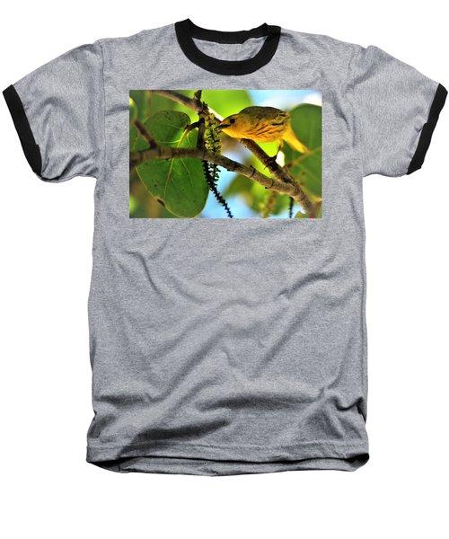 Warbler's Delight Baseball T-Shirt