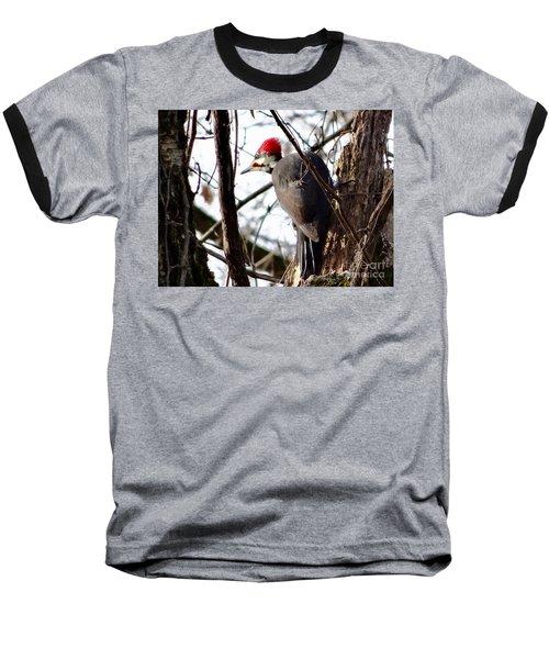 Warypileated Baseball T-Shirt