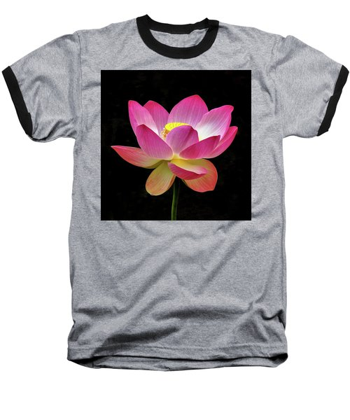 Water Lily In The Light Baseball T-Shirt