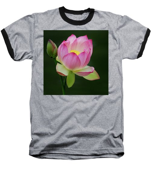 Water Lily In The Pond Baseball T-Shirt
