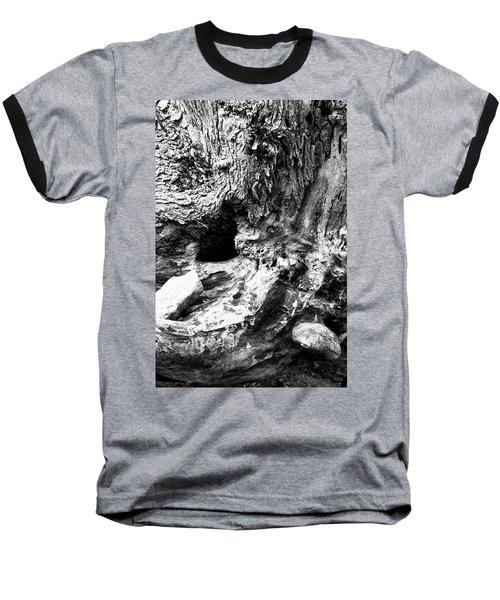 Weathered Stump Baseball T-Shirt