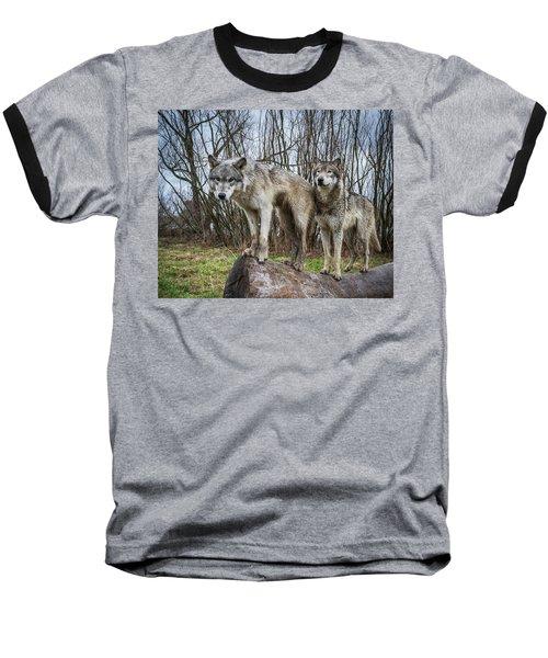 Well Hello Baseball T-Shirt