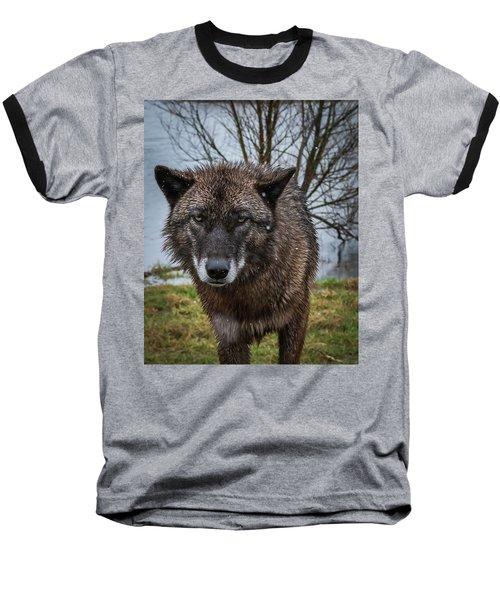 Wet Wolf Baseball T-Shirt
