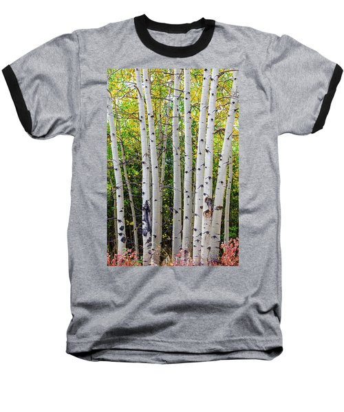 Baseball T-Shirt featuring the photograph White Bark Golden Forest by James BO Insogna