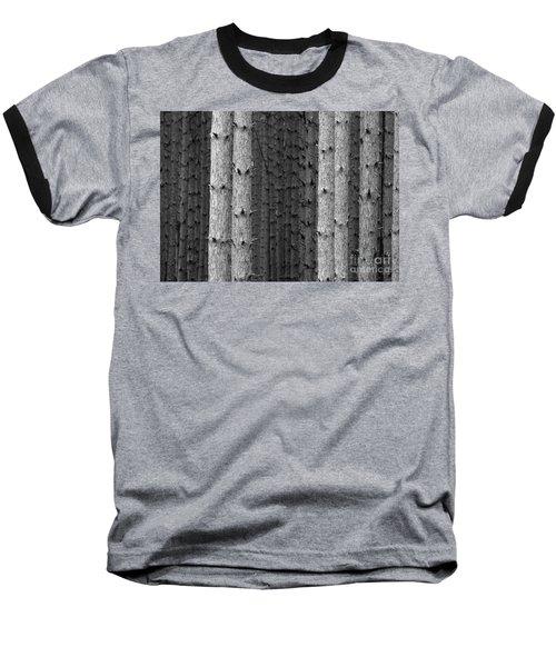 White Pines Black And White Baseball T-Shirt