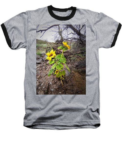 Wild Desert Sunflower Baseball T-Shirt