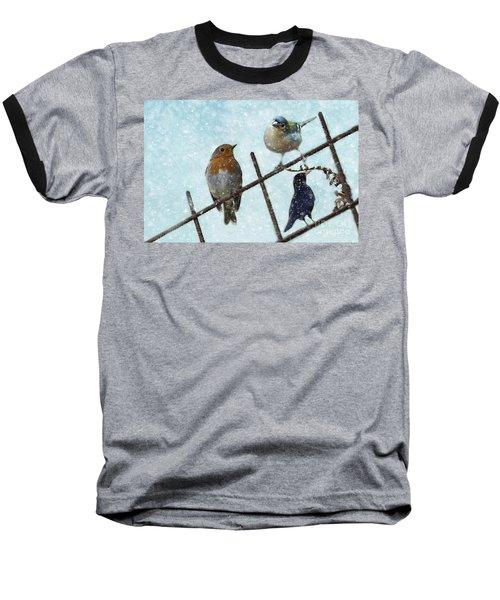 Winter Birds Baseball T-Shirt