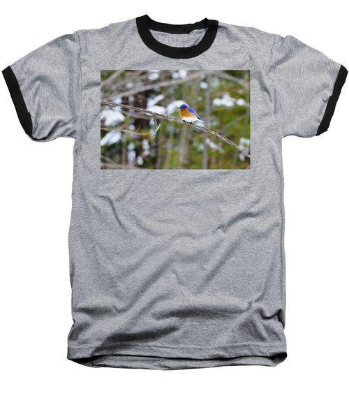 Winter Blue Baseball T-Shirt
