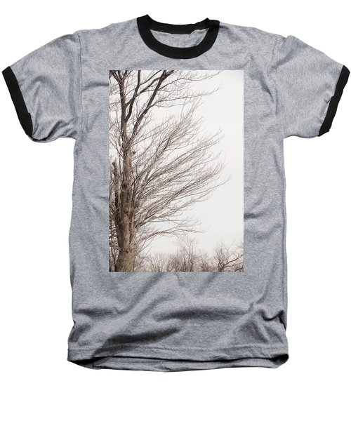 Winter Hoarfrost Baseball T-Shirt
