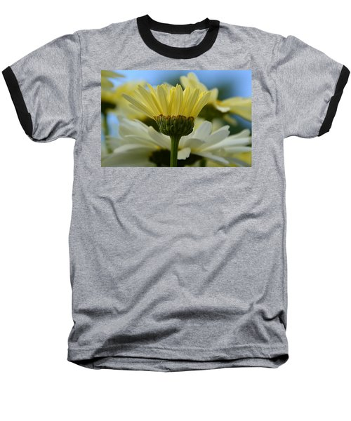 Yellow Daisy Baseball T-Shirt